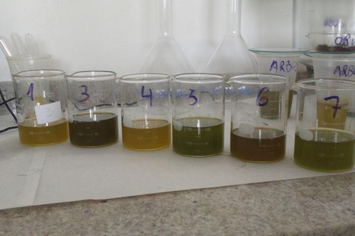 Elaboracion de coupages - Oleoconsulting